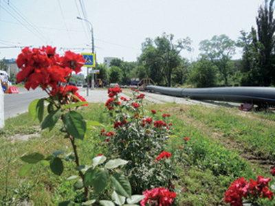 В Таврово под Белгородом проложили новый водовод длиной 5,2 км