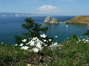 В Минприроды России оценили итоги подготовки и проведения Года экологии за первое полугодие