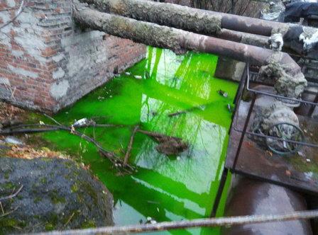 По улицам Кирова растекается зеленая вода