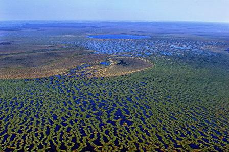 В России планируют расширить список водно-болотных угодий международного значения