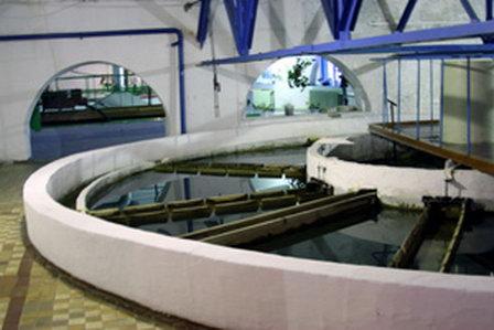 Под Новый год в Тюмени подпишут соглашение с инвестором по модернизации водоснабжения