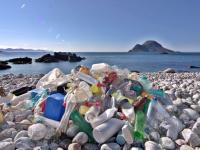 Британские экологи в целях минимизации загрязнений Мирового океана призывают ввести налог на пластиковые пакеты
