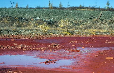 Река Молчанка близ Тюмени окрасилась в красный цвет