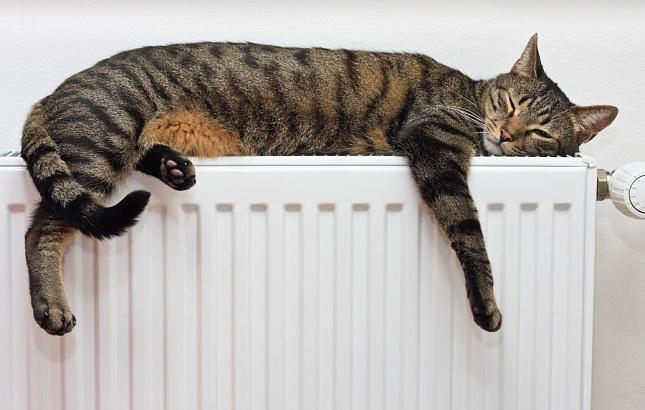 Потребители смогут оплачивать теплоснабжение по показателям индивидуальных приборов учёта