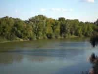 В Липецкой области начато проектирование третьего этапа экологической реабилитации реки Воронеж