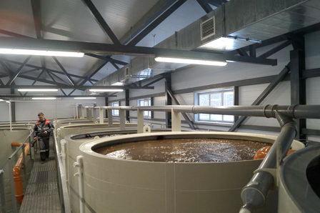 В Хабаровске на пивоваренном заводе запустили очистные сооружения с анаэробными технологиями