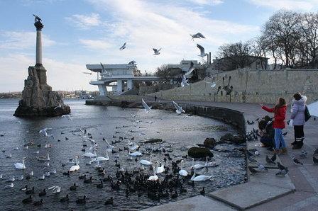 В Севастополе возбуждено угловное дело по строительству очистных