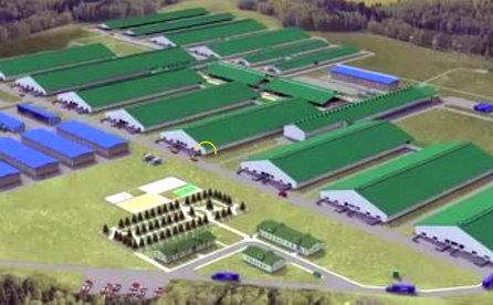 В Томске тестируют новые технологии переработки стоков животноводческих комплексов
