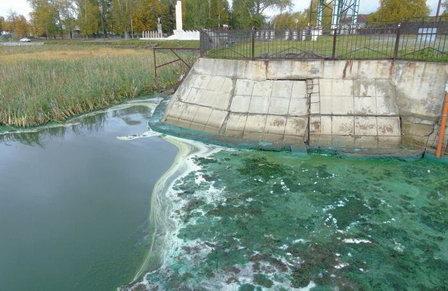 Нежданкинское водохранилище на Дальнем Востоке заселят очистительными микроорганизмами