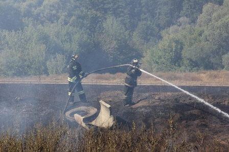 В Воронеже спасатели тушат очаги возгорания на иловых отложениях правобережных очистных сооружений