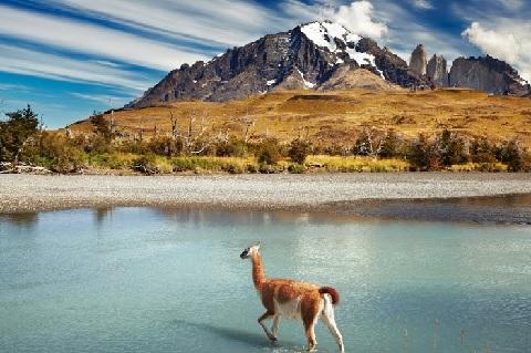 Чили стала одним из мировых лидеров в сфере очистки сточных вод