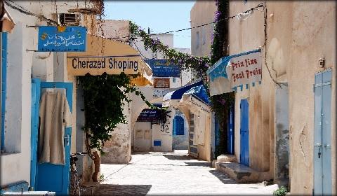 На острове Джерба в Тунисе заработала первая в стране станция опреснения воды