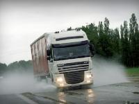Основным источником микропластикового загрязнения водной среды признаны автомобильные шины