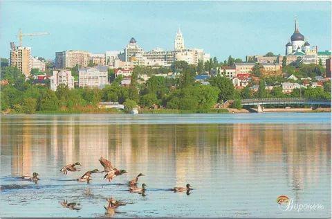 Воронеж ищет концессионера для объектов теплоснабжения города
