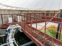 В Калужской области требуется построить в первоочередном порядке более 50 сооружений очистки сточных вод