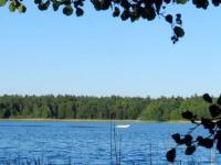 На реабилитацию Людиновского водохранилища в Калужской области направлено 190 млн. руб.